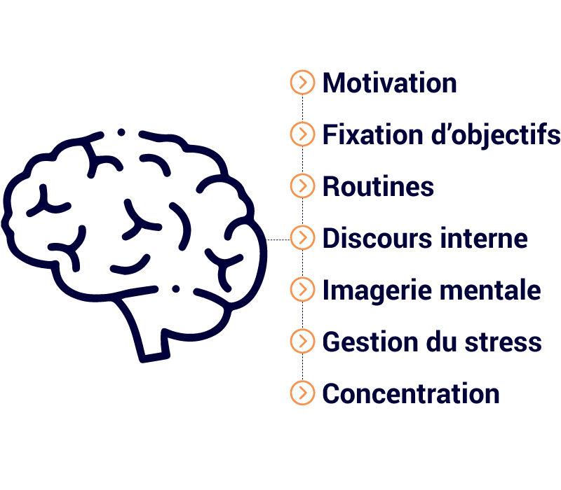 brainsport